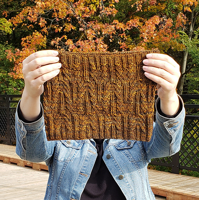 Brown cabled cowl.